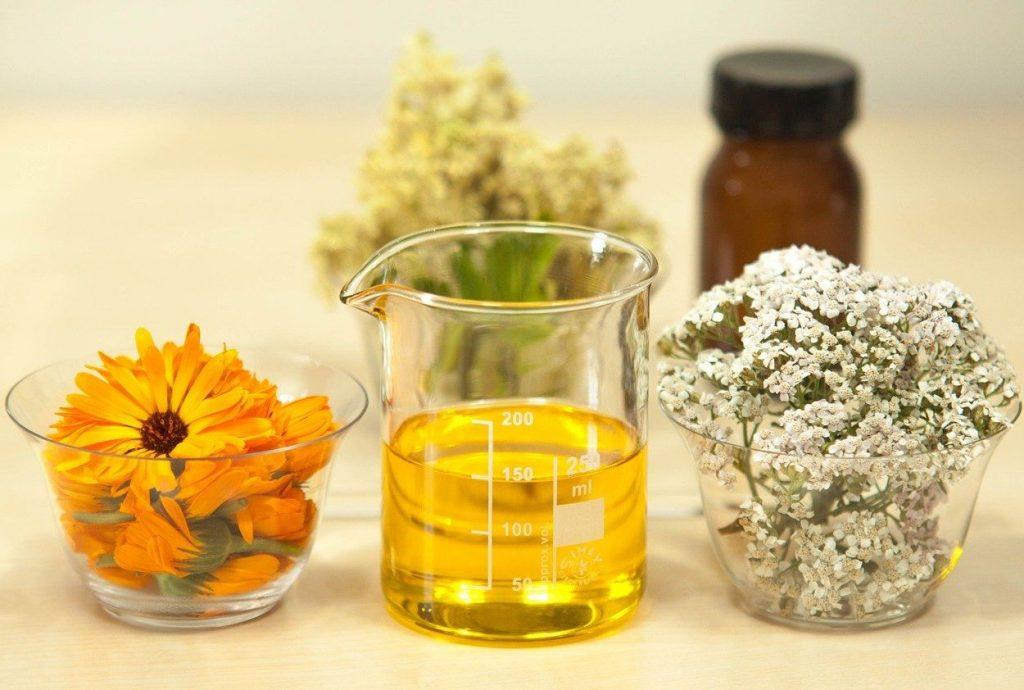Sila byliniek v kozmetike: Predstavujeme vám tie najúčinnejšie