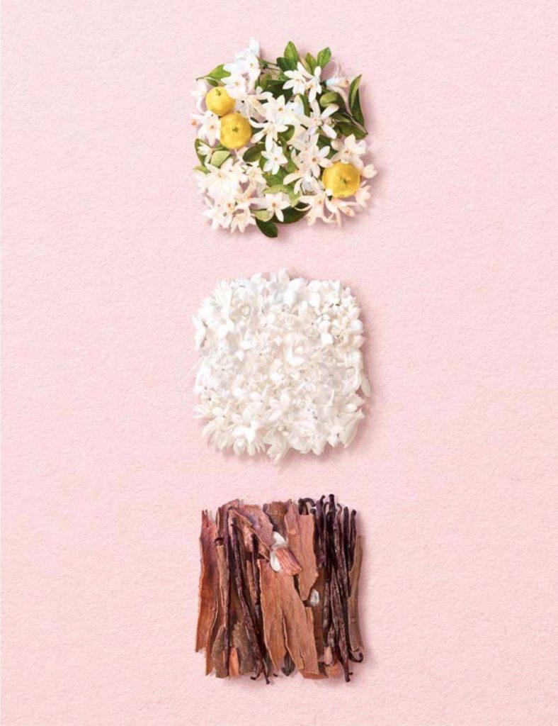 Giorgio Armani uvádza svoj prvý udržateľný parfum My Way