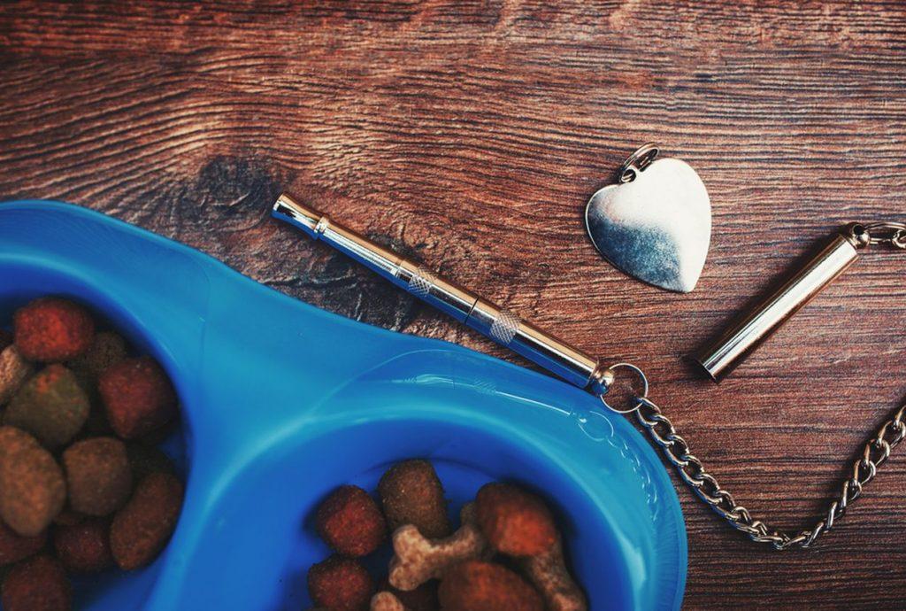 Prémiové krmivo podporí dlhý a plnohodnotný život vášho psa